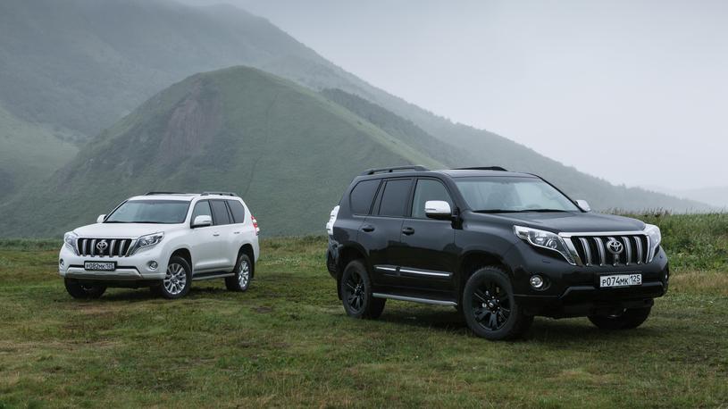 В России назвали самые популярные дизельные автомобили этого года