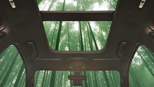 Форд желает выпускать автомобили избамбука