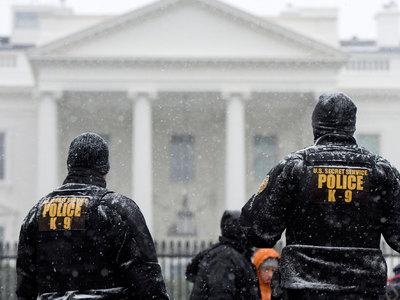 Снегопады в США унесли жизни десяти человек. Ущерб в миллиард долларов