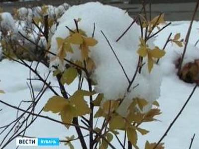 На Кубани объявлено экстренное предупреждение в связи с непогодой