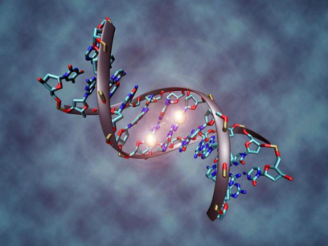 Дефекты РНК излечимы при помощи методик, основанных на клик-химии (иллюстрация Wikimedia Commons).