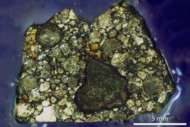 Метеорит Semarkona, который использовался для изучения магнетизма молодой Солнечной системы (фото MIT Paleomagnetism Laboratory).
