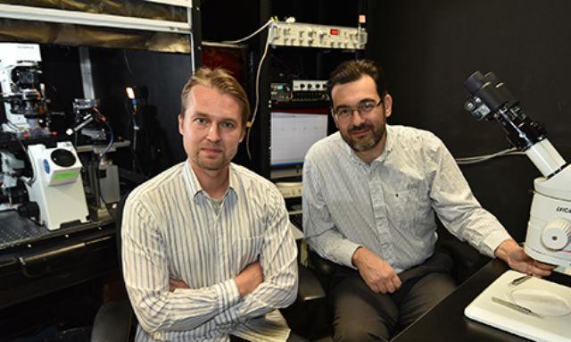 Авторы исследования и экспериментов Франс Винберг (Frans Vinberg) и Владимир Кефалов (Vladimir J. Kefalov) (фото Robert Boston).