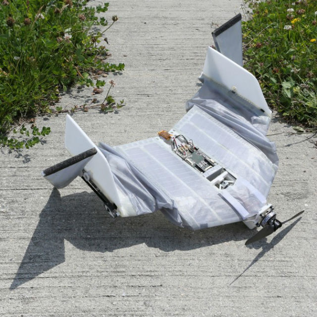 Крылья робота покрыты мягкой тканью (фото EPFL).