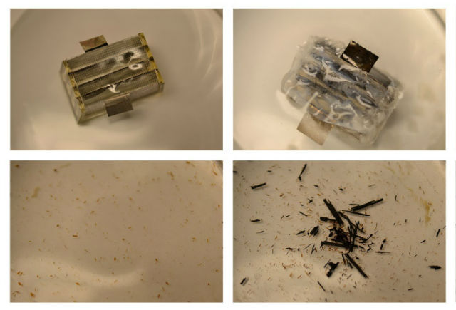 Пролежав в воде три недели биоразлагаемая батарея полностью растворилась (фото University of Illinois).