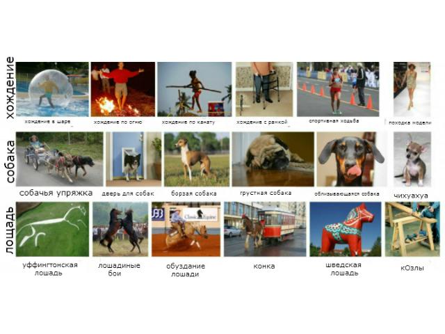 Программа LEVAN учится, связывая слова с изображениями (фото University of Washington).