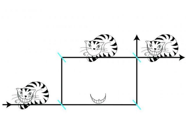 Нейтроны в эксперименте вели себя словно Чеширские коты: сами частицы и их спины оказывали пространственно разделены