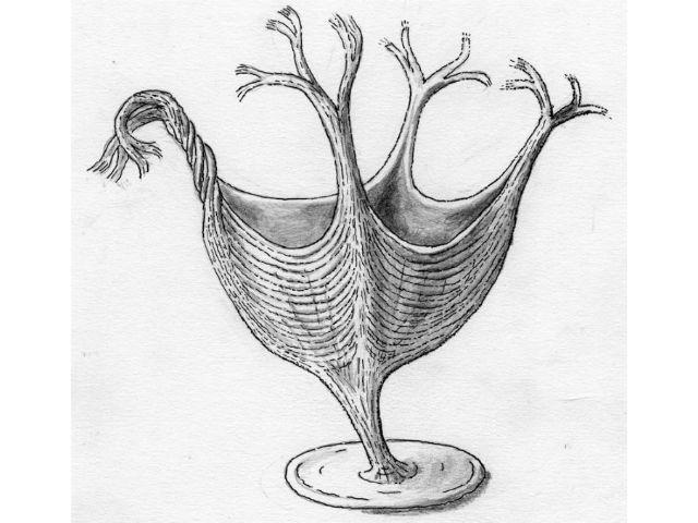 Так могла выглядеть мышечная система древнего животного (иллюстрация Martin Brasier).
