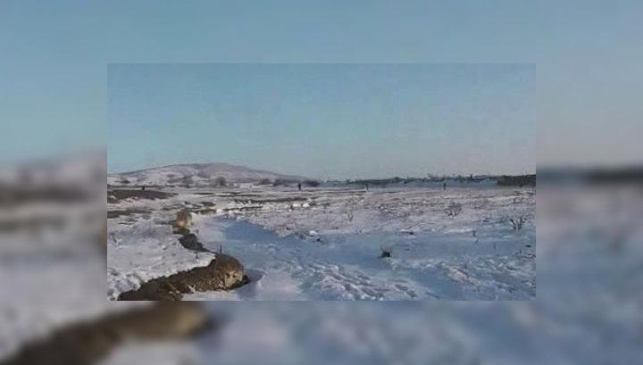Вести.Ru: В руки спецслужб попал архив Даудова: боевик призывал не ...