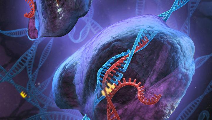 Появился ген не позволяющий антибиотикам ликвидировать бактерии