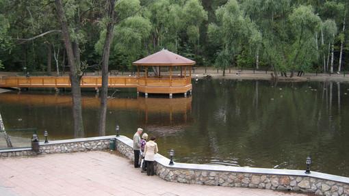 Автор: Лебединое озеро