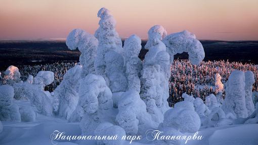 Автор: Олег Масорин