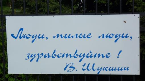 Автор: Ирина Аксенова
