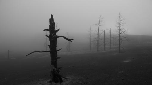 Автор: Денис Будьков