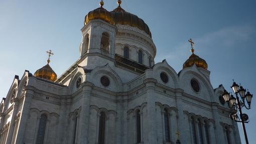 Автор: Логинова Ирина