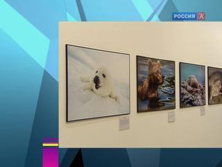 Новости культуры. Эфир от 20.01.2017 (15:00)
