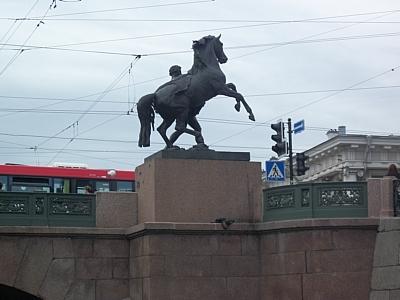 В Петербурге у МФЦ образовались очереди из-за сбоя работы сайта госуслуг