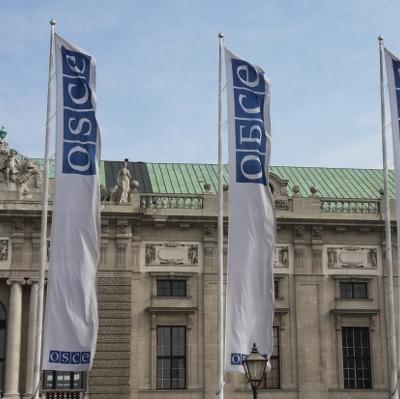 Наблюдатели ОБСЕ впервые остались в Широкино на ночь