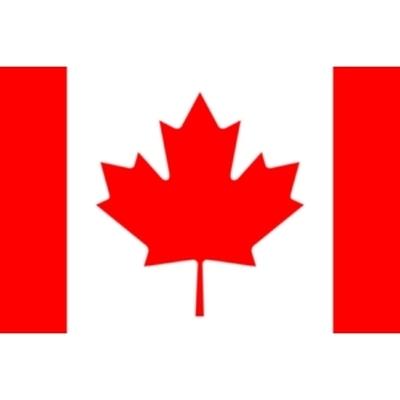 На западе Канады из-за проливных дождей и штормового ветра частично отменено паромное сообщение