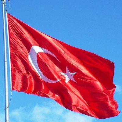 Суд в Турции постановил арестовать шеф-редактора и корреспондента газеты