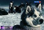 Эфир от 21.01.2013