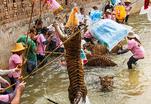 Таиланд. Тигриный монастырь. Часть 2