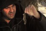 Закон природы. Мышиная охота