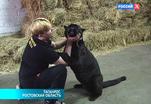 Эфир от 04.07.2014 (19:00)