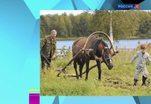 Эфир от 24.07.2014 (19:00)