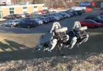 Учёные из штата Массачусетс представили публике собаку-робота
