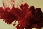 Тайны крови