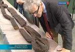 Исследователей Шигирского идола обвиняют в нанесении ущерба памятнику