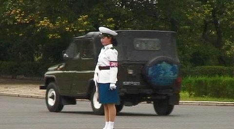 Министра обороны КНДР расстреляли из зенитной пушки