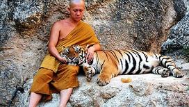 Таиланд. Тигриный монастырь. Часть 1
