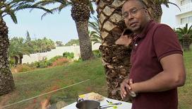 Кипр. В поисках ворованного мяса