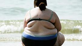 Обвиняемый - жир